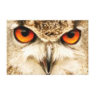 Eagle Owl Eyes Photographic Print Canvas Prints