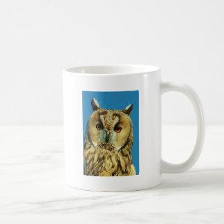 Eagle Owl Face Coffee Mugs