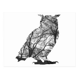 Eagle owl forest trees postcard