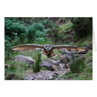 Eagle Owl. Forward Motion Greeting Card