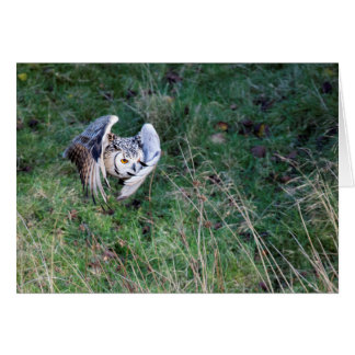 Eagle Owl. In Your eye Greeting Card