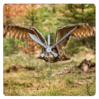Eagle Owl Square Wall Clock