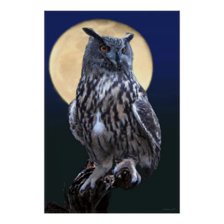 Eagle Owl Watercolor Poster -24x36 -or smaller