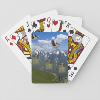 Eagle Playing Card Deck
