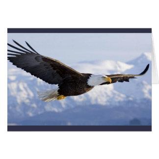 Eagle Soaring greeting card