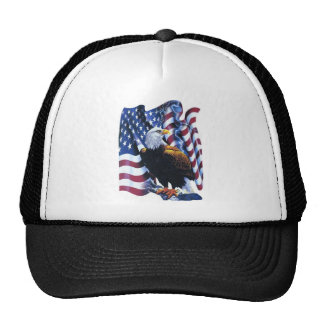Eagle with American flag Hat