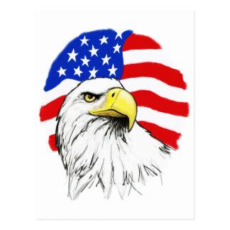 Eagle with Flag Postcard