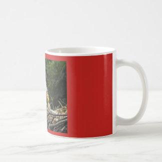 Eaglet  Feeding  Time Coffee Mug