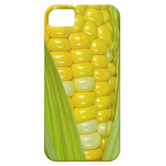 Ear Of Corn iPhone 5 Cases