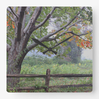 Early Autumn Square Wall Clock
