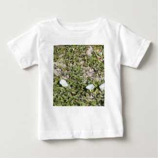 Early Beach Sand Morning Glories Baby T-Shirt