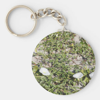 Early Beach Sand Morning Glories Basic Round Button Key Ring