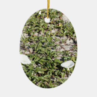 Early Beach Sand Morning Glories Ceramic Ornament