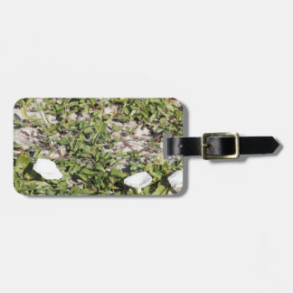 Early Beach Sand Morning Glories Luggage Tag