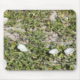 Early Beach Sand Morning Glories Mouse Pad