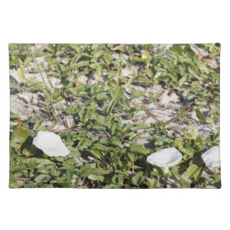 Early Beach Sand Morning Glories Placemat