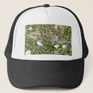 Early Beach Sand Morning Glories Trucker Hat