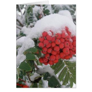 Early Montana Winter Card