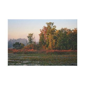Early morining light stretched canvas prints