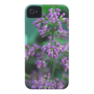 Early Morning Lilacs Case-Mate iPhone 4 Case