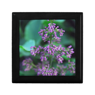 Early Morning Lilacs Small Square Gift Box