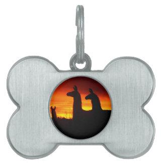 Early Morning Llamas Pet ID Tag