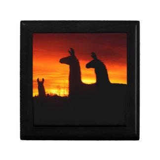 Early Morning Llamas Small Square Gift Box