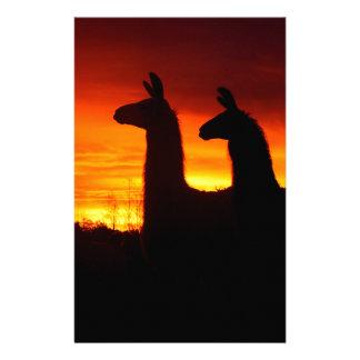 Early Morning Llamas Stationery Design