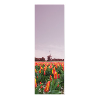 Early Morning Tulip Flowers Field Windmill Pack Of Skinny Business Cards