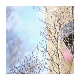 Early Spring Stretched Canvas Print