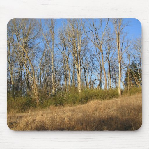 Early Spring Mousepads