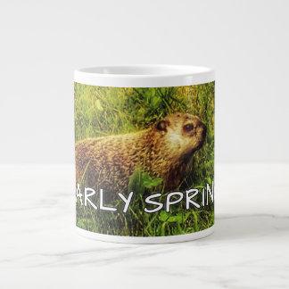 Early Spring mug