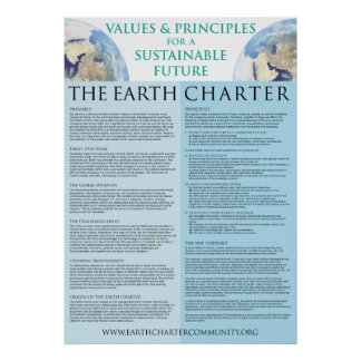Earth Charter Poster - 22x31 Matte Finish