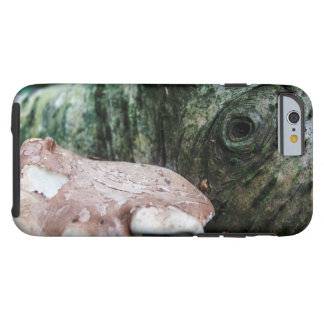 Earth Creature Tough iPhone 6 Case
