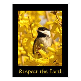 Earth Day Chickadee Bird Yellow Flowers Postcard