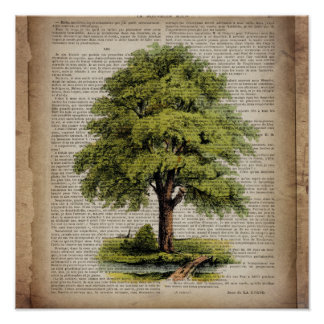 Earth Day ECO dictionary prints vintage oak tree