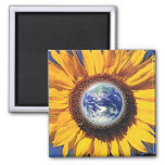 EARTH DAY SUNFLOWER BY GREGORY GALLO MAGNETS