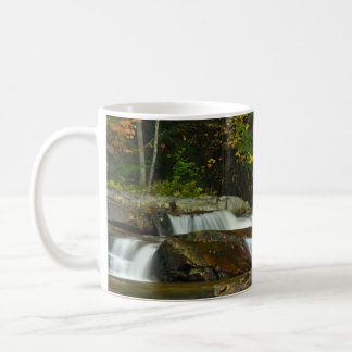 Earth Day Waterfall Mug