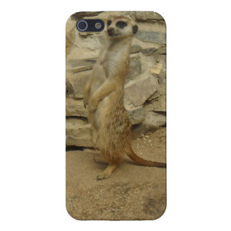 Earth male iPhone 5/5S cases