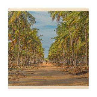 Earth Topical Road Porto Galinhas Brazil Wood Print