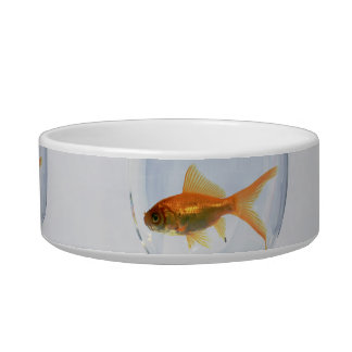 Earthen bowl for cats with image of fish cat food bowls
