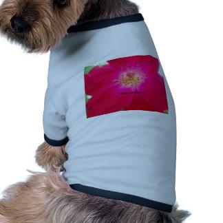 Earth's an Illusion Ringer Dog Shirt