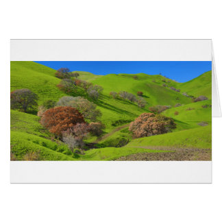 East Bay Hills Card