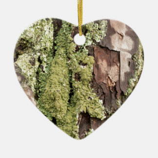 East Coast Pine Tree Bark Wet From Rain with Moss Ceramic Heart Decoration