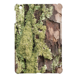 East Coast Pine Tree Bark Wet From Rain with Moss iPad Mini Covers