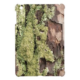 East Coast Pine Tree Bark Wet From Rain with Moss iPad Mini Covers