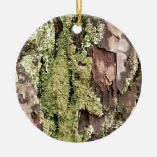 East Coast Pine Tree Bark Wet From Rain with Moss Round Ceramic Decoration