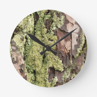 East Coast Pine Tree Bark Wet From Rain with Moss Round Clock