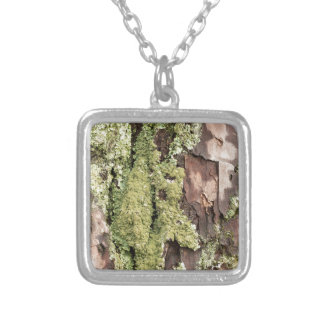 East Coast Pine Tree Bark Wet From Rain with Moss Silver Plated Necklace