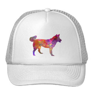 East Siberian Laika in watercolor Cap